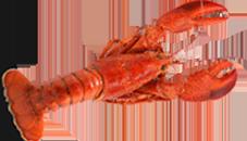 Crawfish Dishs
